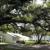 New Tampa Baptist Church