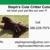 Steph's Cute Critter Cuts, Inc