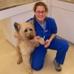 Animal Hospital of Worthington - CLOSED