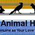 Normandy Animal Hospital Inc