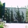 Carmel Pines