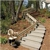 Electro-Ease Stair Lifts