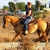 S&D Horseback Riding/Rentals