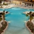 Holiday Inn ORLANDO-DISNEY SPRINGS? AREA