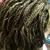 African Beautiful Braids