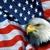 American Cash Advance & Title Loan