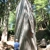 Camp Hammer