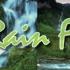 Tinker's Rainforest Deli