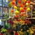 City Scents Flowers & Gifts