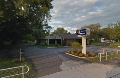 Countryside Animal Hospital - Clearwater, FL