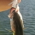 Captain, Eric Olsen Fishing Charters