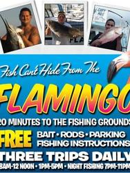Flamingo Deep Sea Fishing