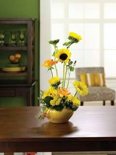 White Weber City Florist, Weber City VA