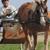 Concord Equestrian Center