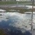 Westridge Pointe