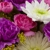 Natures Moments Florist