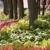 Combs Landscape & Nursery