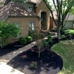 Barbeau Lawn and Landscape