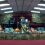 San Antonio for Christ