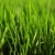 Nutriment Applied Turf Systems