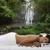 Balanced Energy Massage