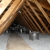 Energy Insulation & Specialty Services