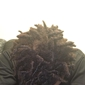 "Best African Braiding - Southaven, MS. This is only 3 days after my ""retwist"" I have not washed or done anything to my hair. Again, this is only 3 days after I left the shop."