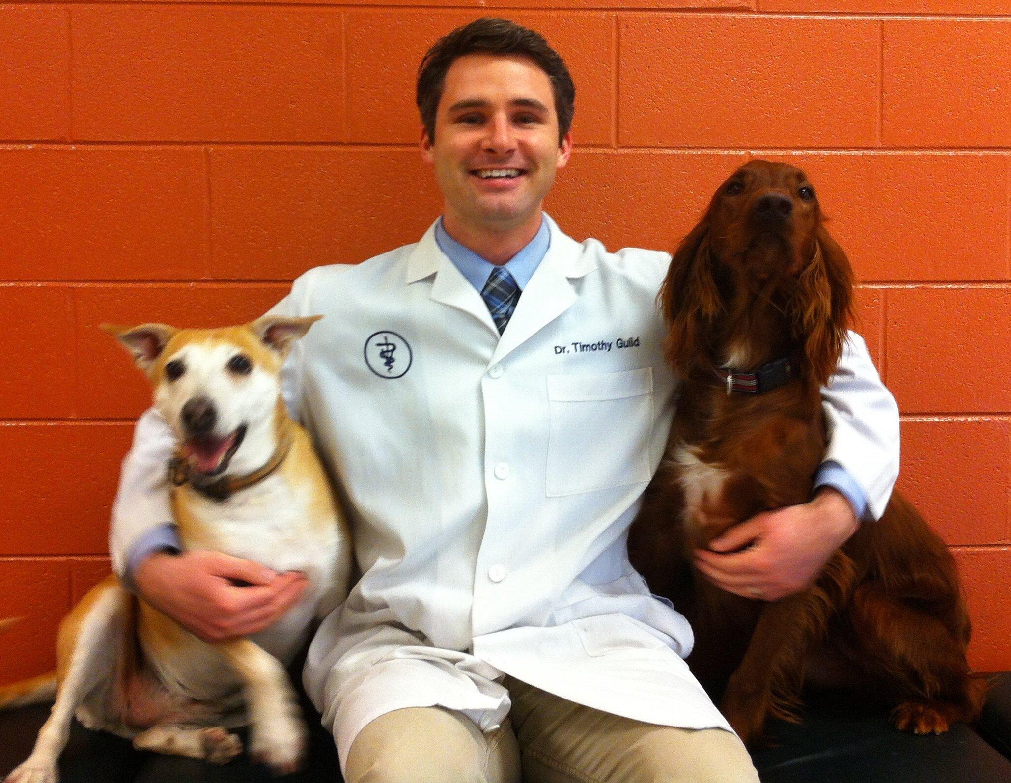 Animal Hospital Maple Orchard West Bloomfield Mi 48322