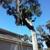 KC's Tree Care