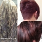 Koala Hair Company - Anchorage, AK