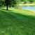 Lawn Doctor of Greeneville-Morristown-Rogersville