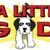 A Little Big Dog Mobile Pet Salon