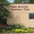 Table Mountain Veterinary Clinic