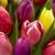 Cherryhill Flowers