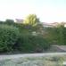 Belvoir Springs