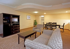 Holiday Inn Hotel & Suites Farmington Hills - Novi - Farmington, MI