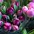 Joy's Gifts & Flowers