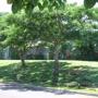 Piilani Garden Apartments