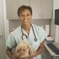 Animal Hospital Of Ft Lauderdale - Fort Lauderdale, FL