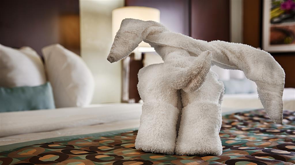 Best Western Plus Elizabeth City Inn & Suites, Elizabeth City NC