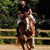Rolling Hills Farm Equestrian Center