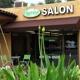 Shearology Salon