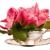 Flowers By Ivona