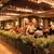 Epiphany Hotel