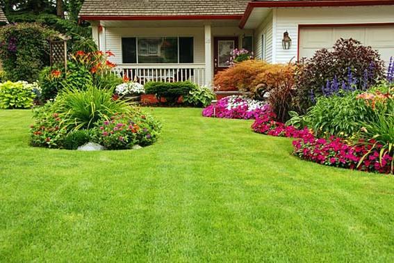 570-380-iStock_000013964719Small_normal_green_yard