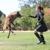 Elissa Cline Dog Training