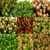 Deb's Flower Market
