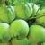 Coconut Wholesaler