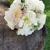 Allyce Marie Designs Wedding & Event Flowers