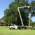 Couch Tree Service